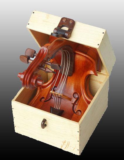 violin squashed in a box