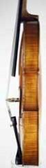 Viola by Ferdinand Josef Homolka, Kutna Hora