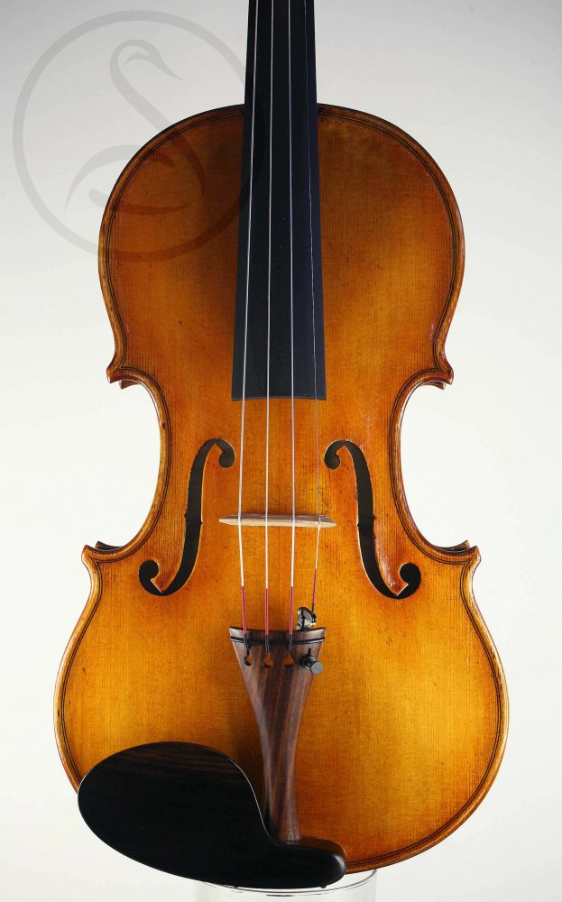 MSV violin
