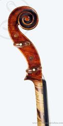 Caspar Strnad viola