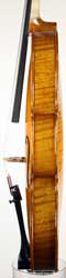 Strad Pattern Violin