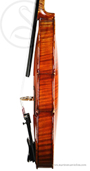 Hilaire Darche Violin side photo
