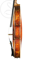 Michael Albani Violin side photo