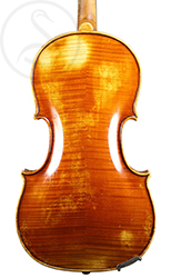Giovanni Schwarz Small Viola back photo