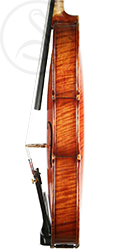 Paul Bailly Violin side photo