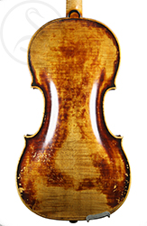 Caspar Strnad Violin back photo