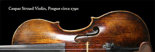 Caspar Strnad Violin
