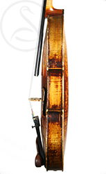 Caspar Strnad Violin side photo