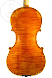 Karel Vávra Violin back photo