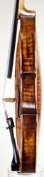 Joannes Havelka Violin side photo