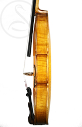 Friedrich Lohmann Violin side photo