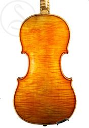 Luigi Salsedo Violin back photo