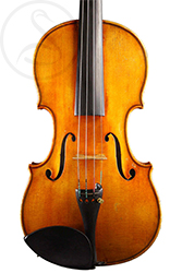 Luigi Salsedo Violin front photo