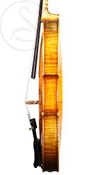 Luigi Salsedo Violin side photo