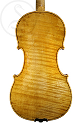 Otakar F Špidlen Violin back photo