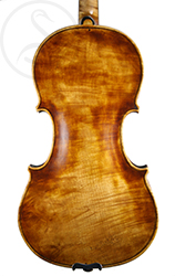 Ludovico Rastelli Violin back photo