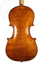 James Steele Violin back photo