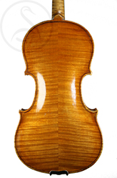 Rodolfo Fredi Violin back photo