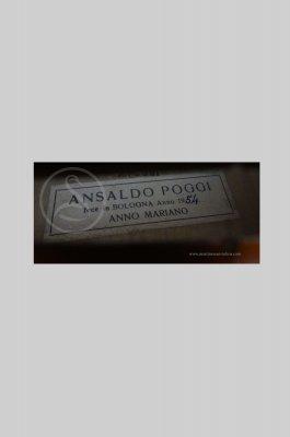 Ansaldo Poggi Viola, Bologna 1954